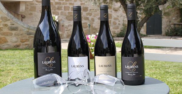 Les vins du Domaine Laurens, Vignoble des templiers